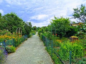Berlin Fasten-wander-Route von coachingjw